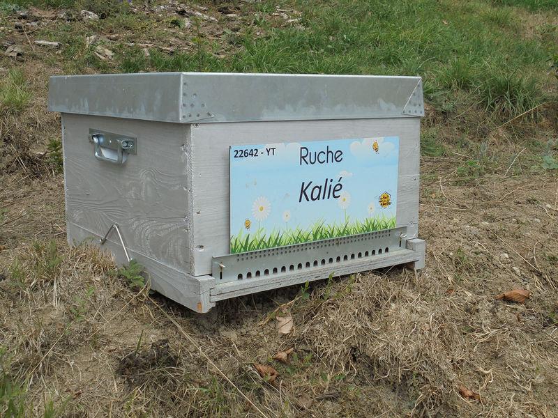 La ruche kalié