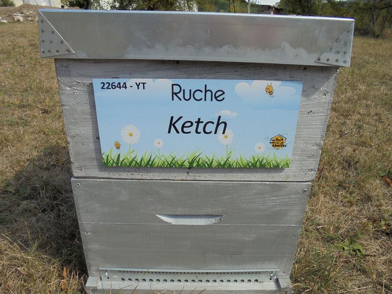 La ruche Ketch