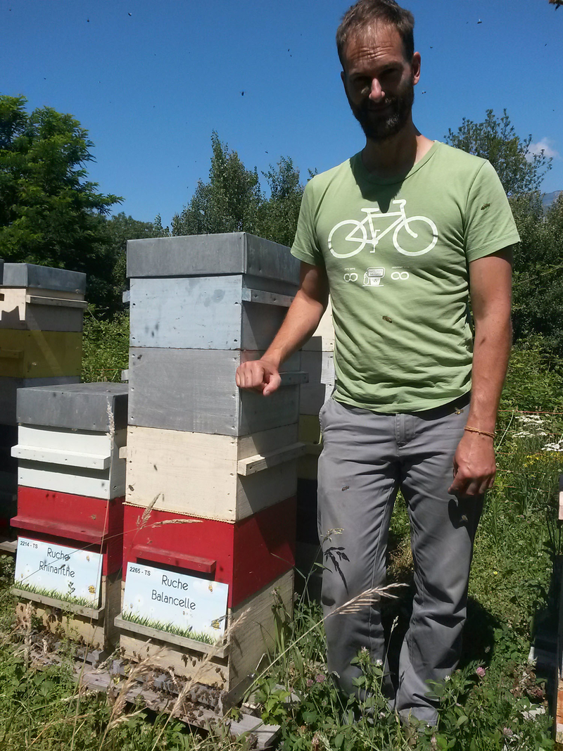 La ruche Balancelle