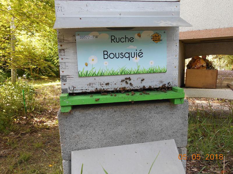La ruche Bousquié