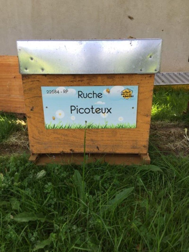 La ruche Picoteux