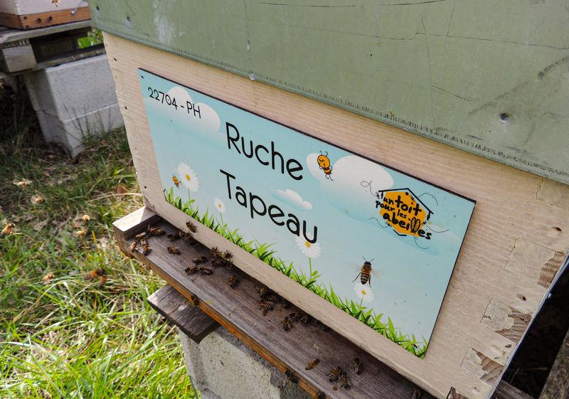 La ruche Tapeau