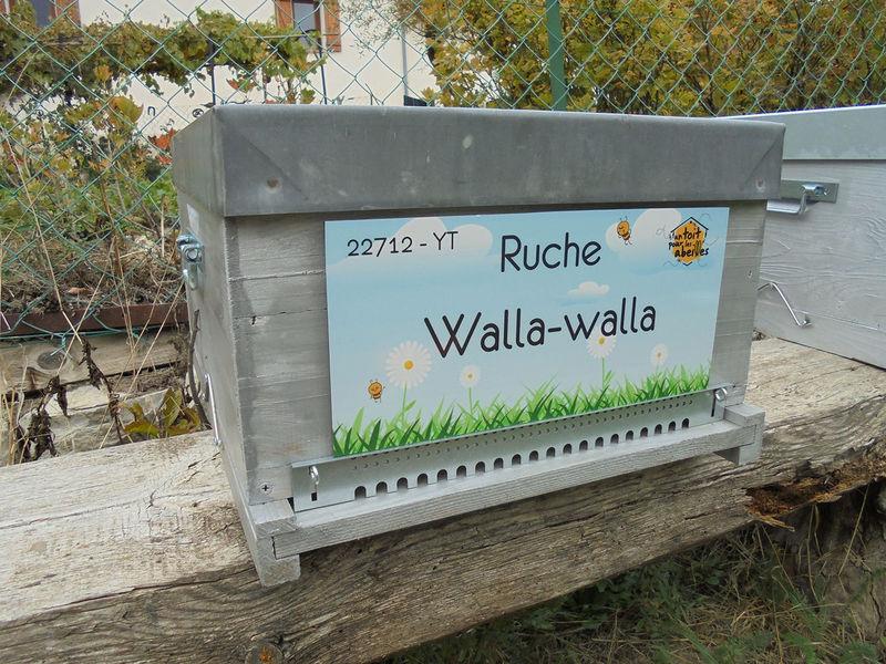 La ruche Walla-walla