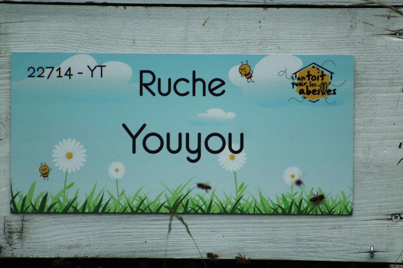 La ruche Youyou