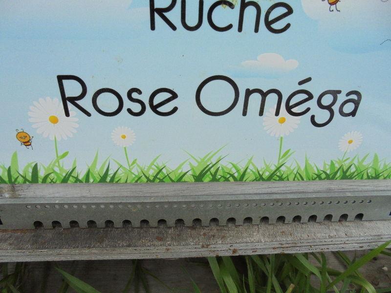 La ruche Rose Oméga