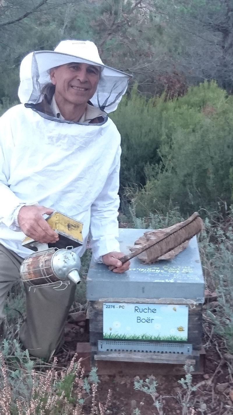 La ruche Boër