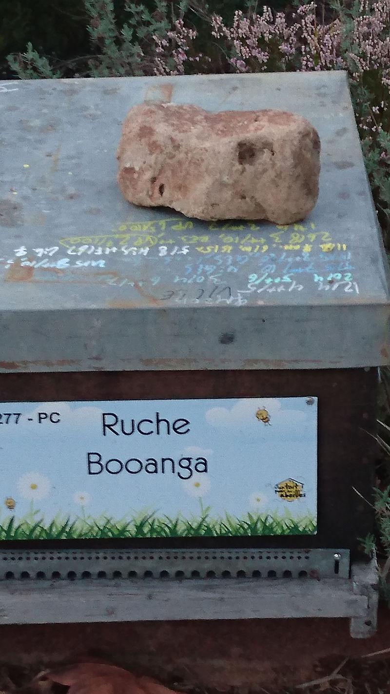 La ruche Booanga