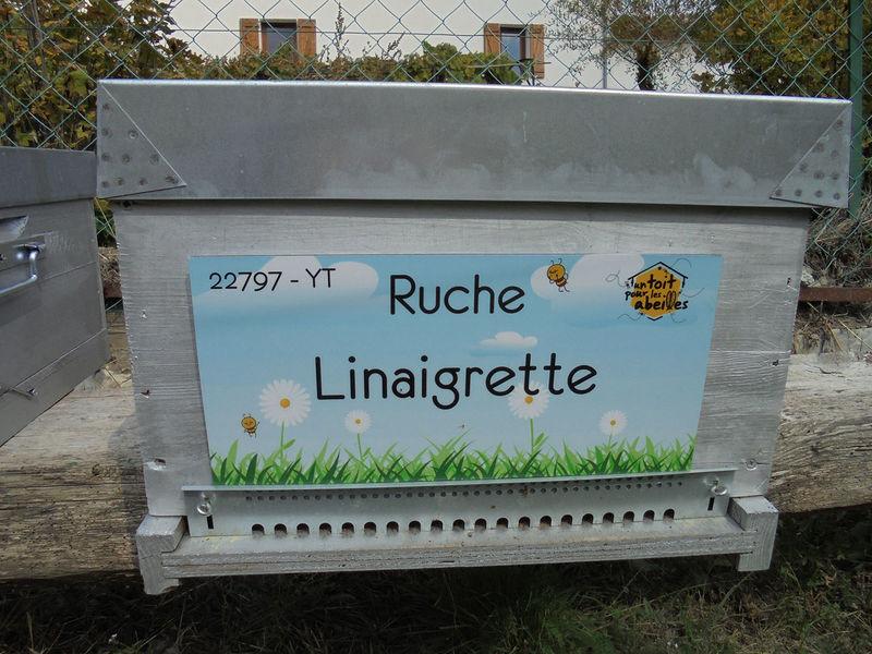 La ruche Linaigrette