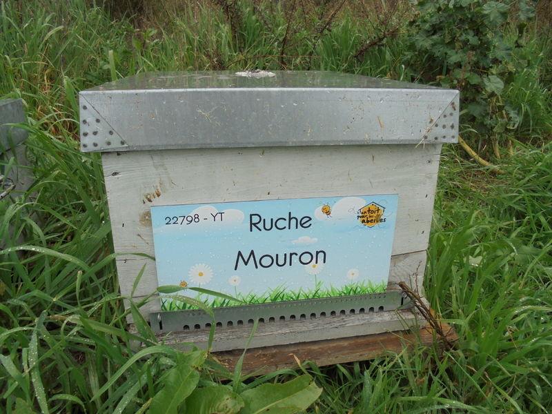 La ruche Mouron