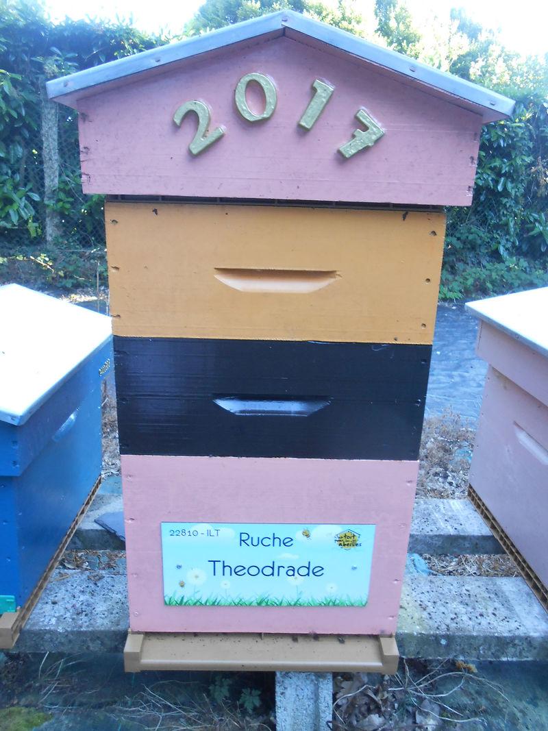 La ruche Theodrade