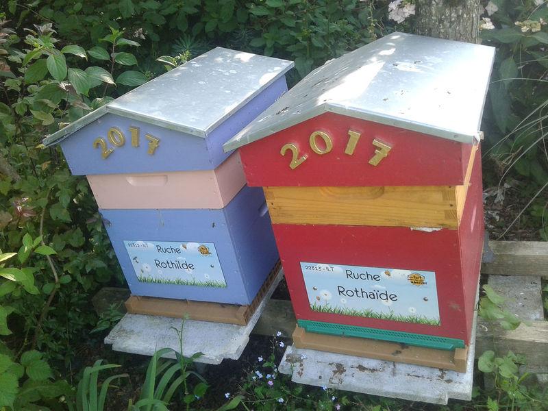 La ruche Rothaïde