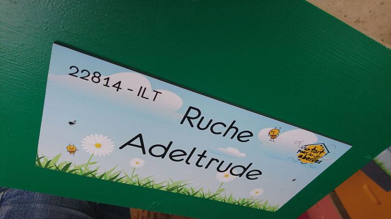 La ruche Adeltrude