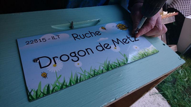 La ruche Drogon de Metz