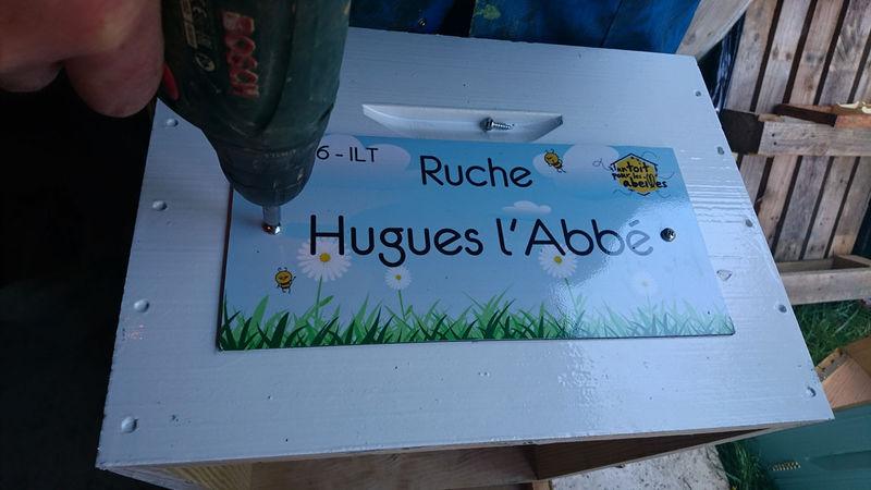 La ruche Hugues l