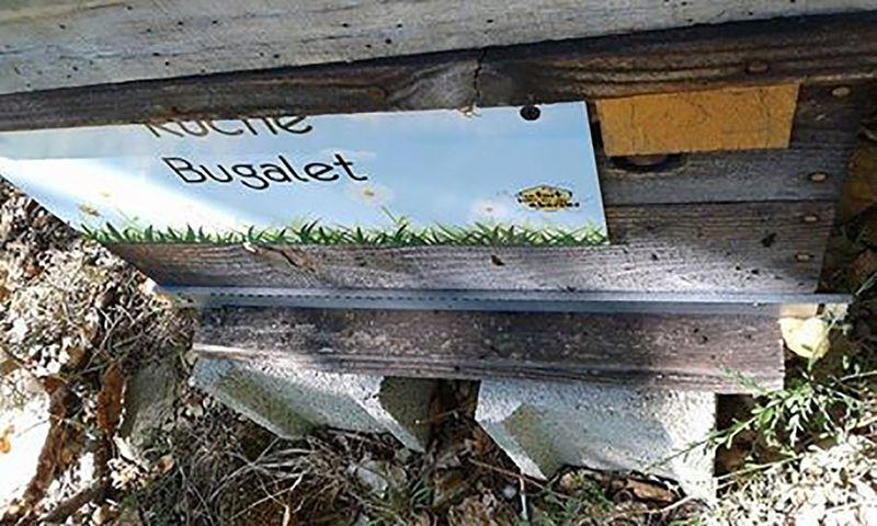 La ruche Bugalet