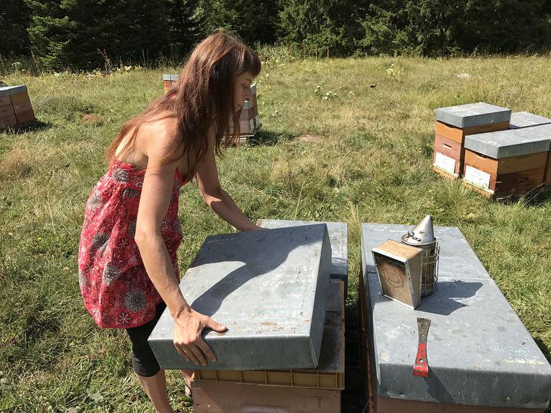 La ruche Almandin