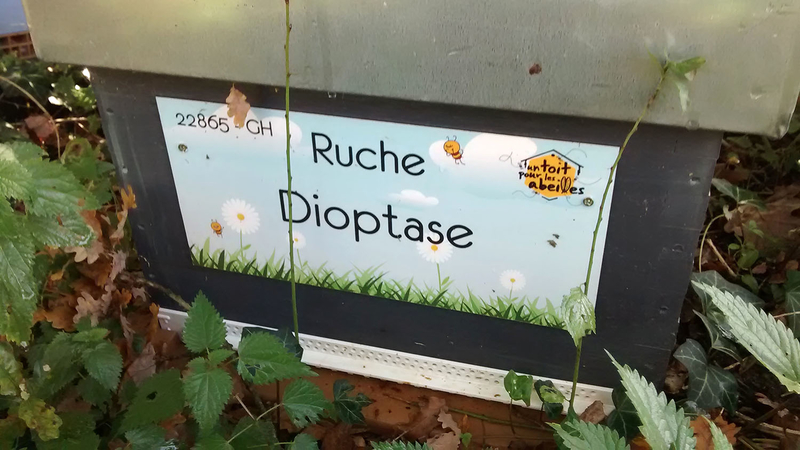 La ruche Dioptase