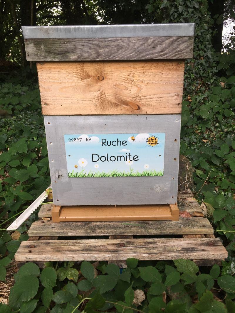La ruche Dolomite