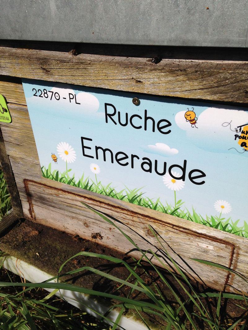 La ruche Emeraude