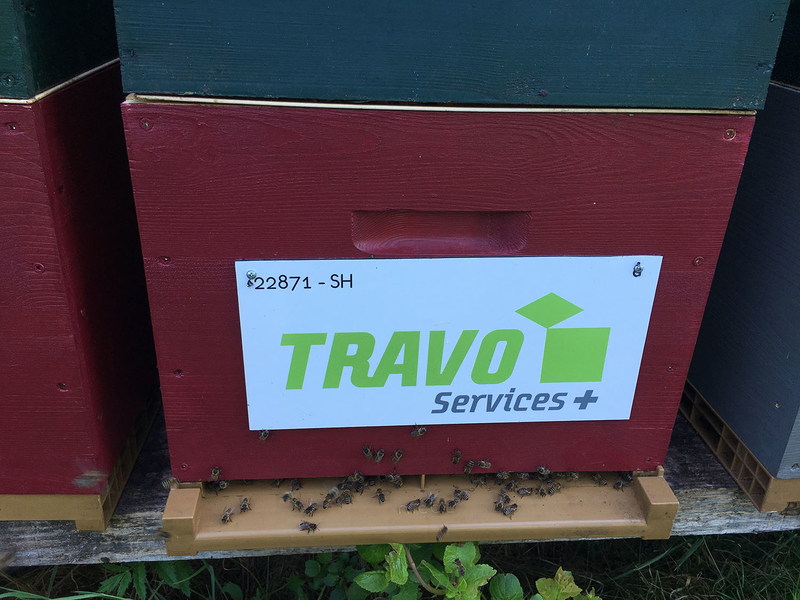 La ruche TRAVO SERVICES +