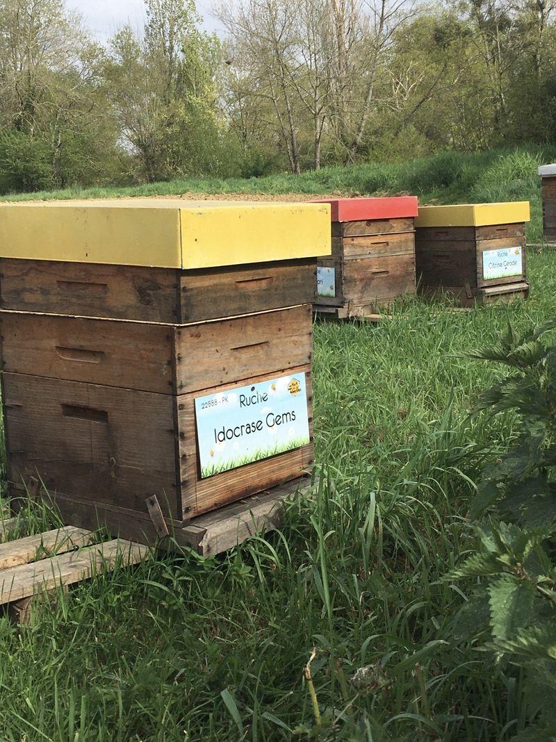 La ruche Idocrase Gems