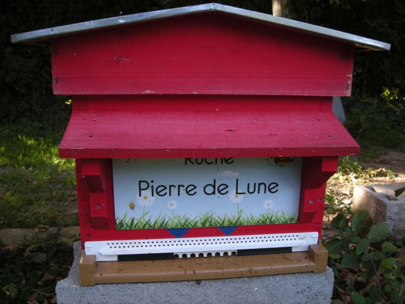 La ruche Pierre de Lune