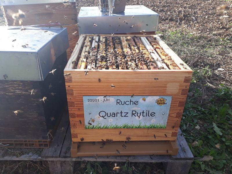 La ruche Quartz Rutile