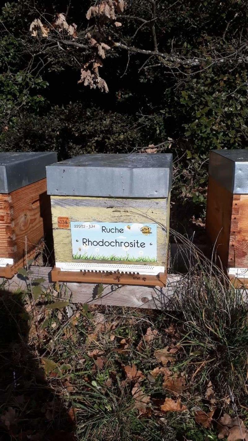 La ruche Rhodochrosite