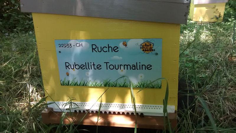 La ruche Rubellite Tourmaline