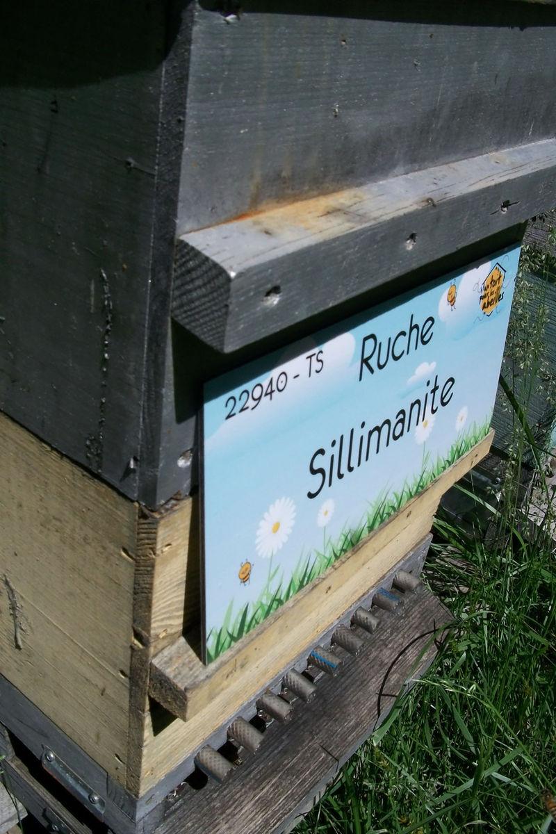 La ruche Sillimanite