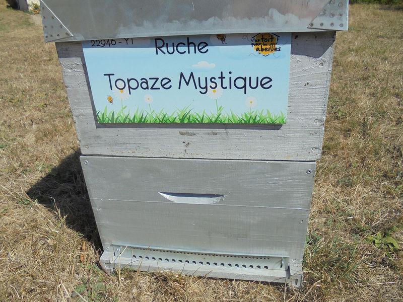 La ruche Topaze Mystique