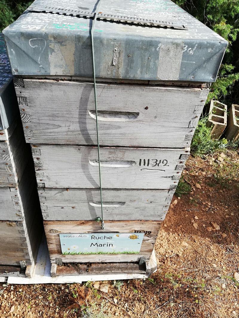 La ruche Marin