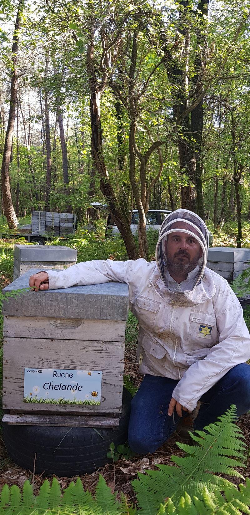 La ruche Chelande