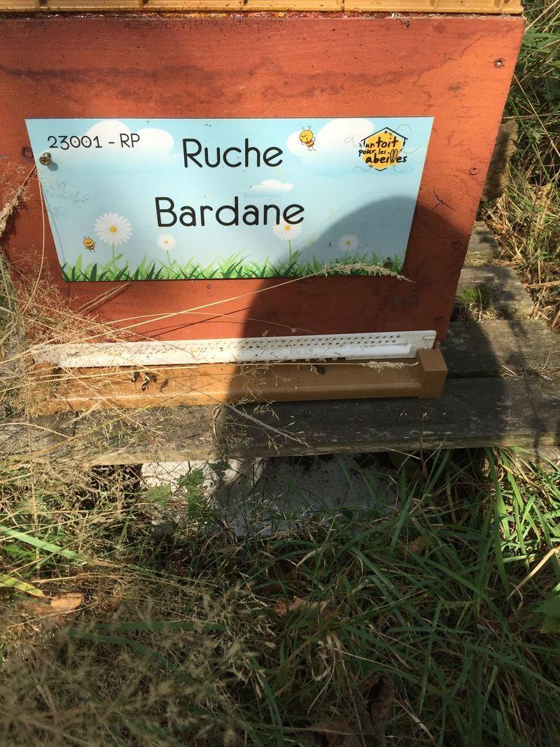 La ruche Bardane