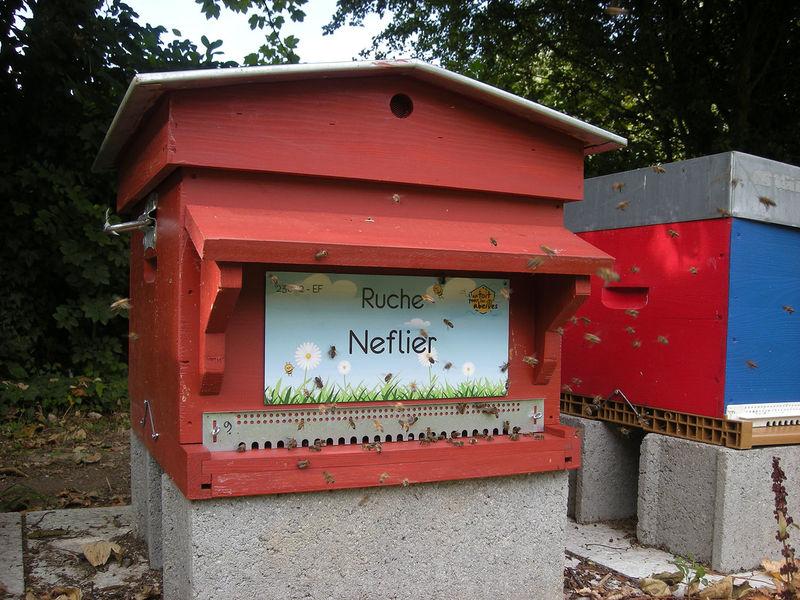La ruche Neflier