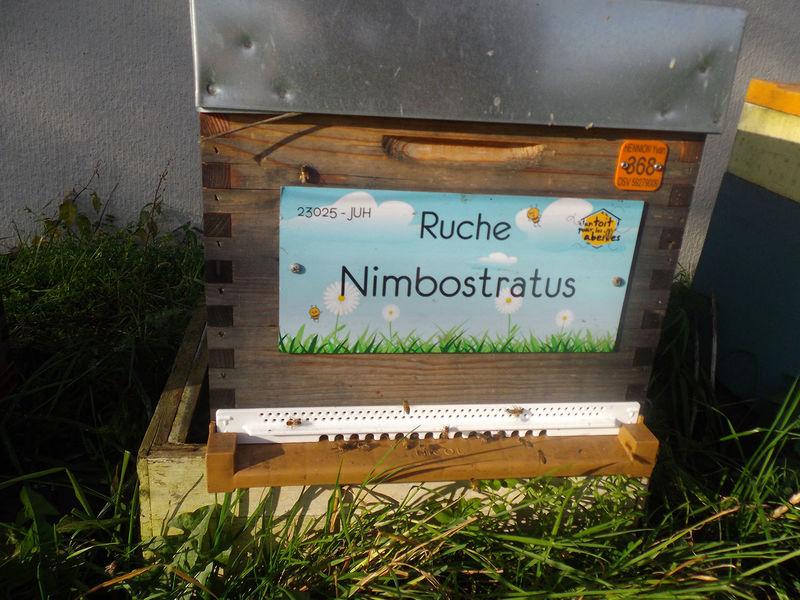 La ruche Nimbostratus