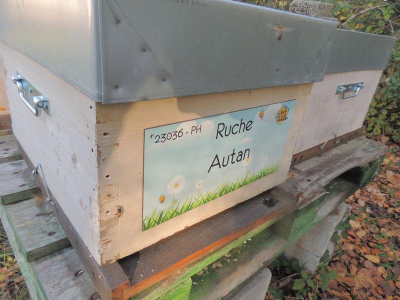 La ruche Autan