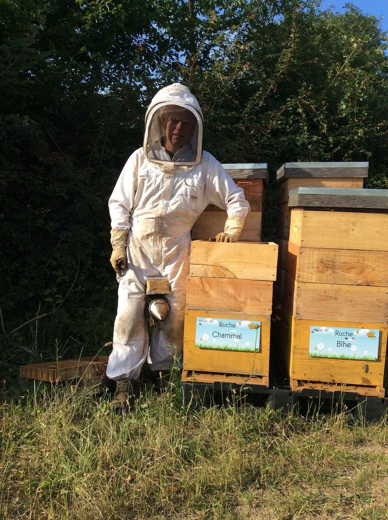 La ruche Chammal