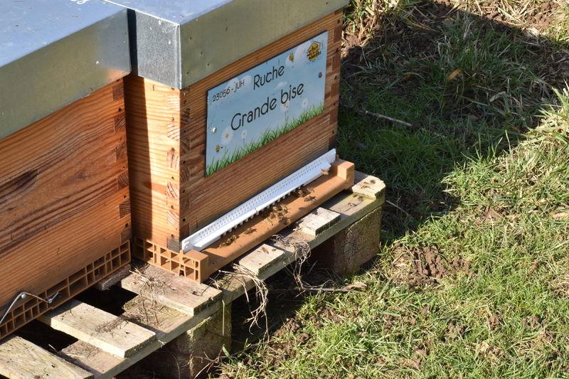 La ruche Grande bise