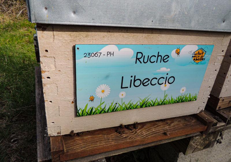 La ruche Libeccio