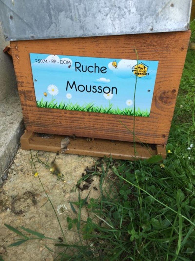 La ruche Mousson