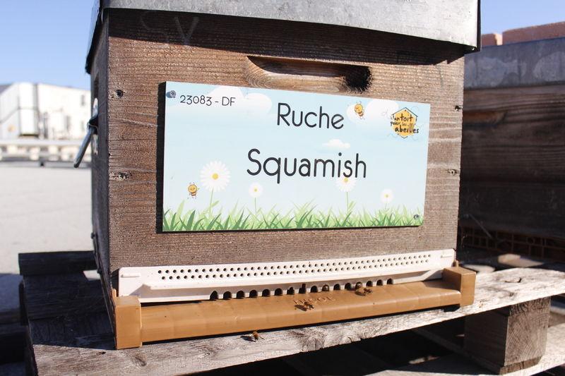 La ruche Squamish