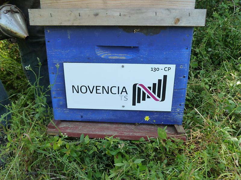 La ruche Novencia group