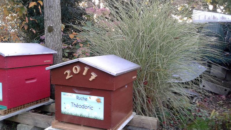 La ruche Théodoric