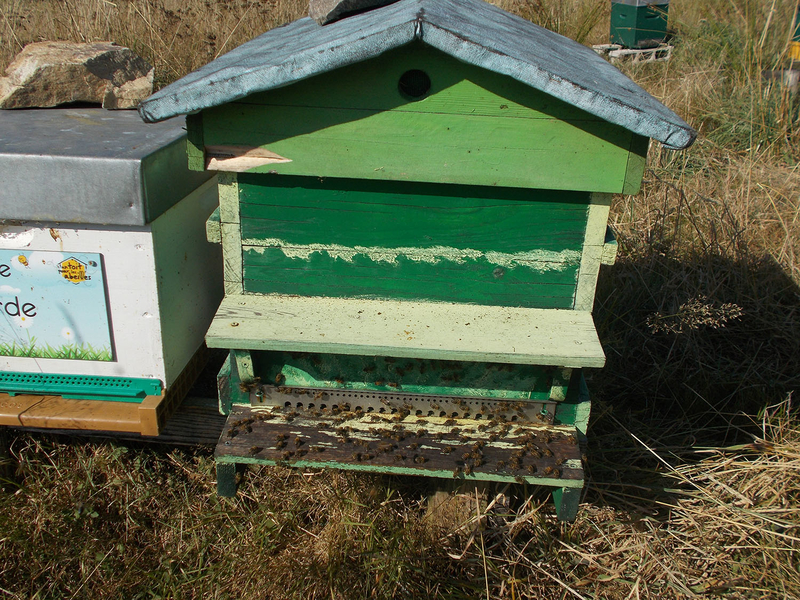 La ruche Monédières