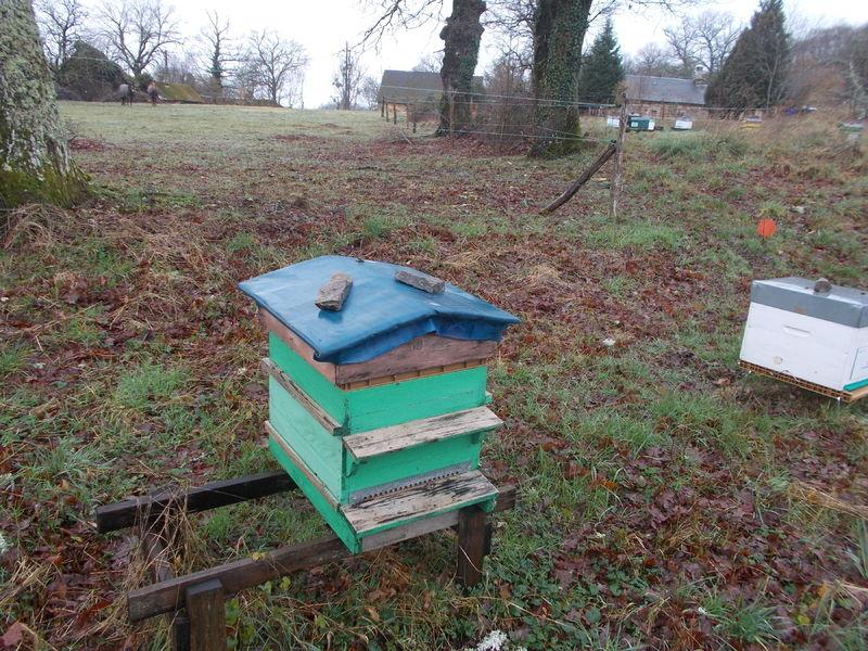 La ruche Vézère