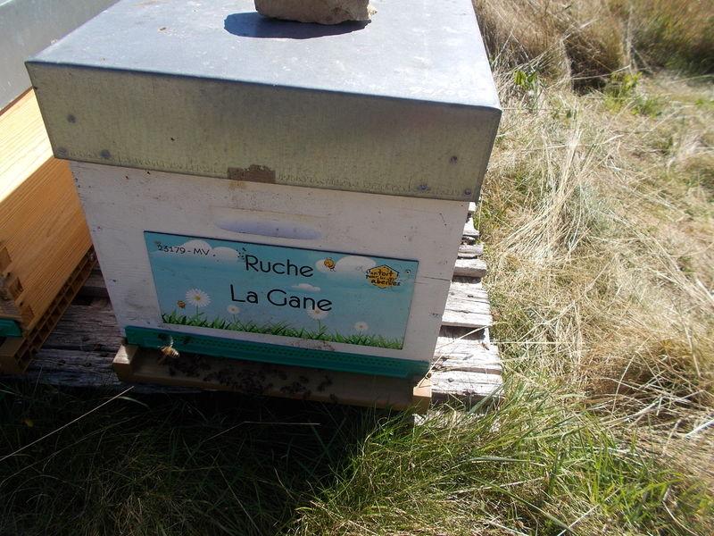 La ruche La Gane