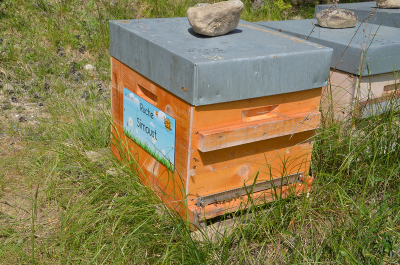 La ruche Simoust