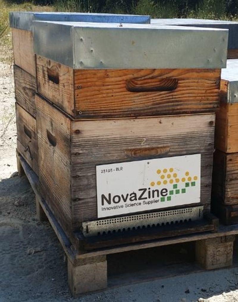 La ruche NovaZine