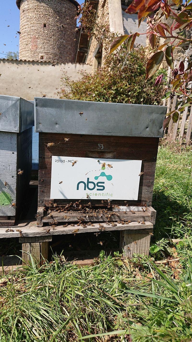 La ruche NBS SCIENTIFIC